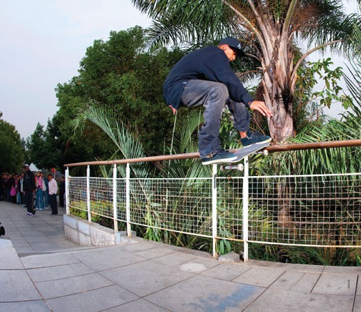 Rodrigo TX, F/S Tailslide (2009)