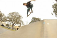 New Sebo Walker Video